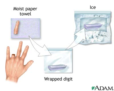 how to make iced fingers