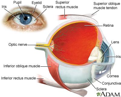 红眼病有哪些表现