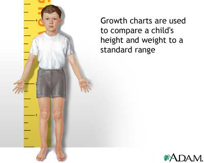 Height/weight chart