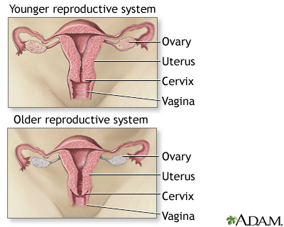 can girls get pregnant on their period