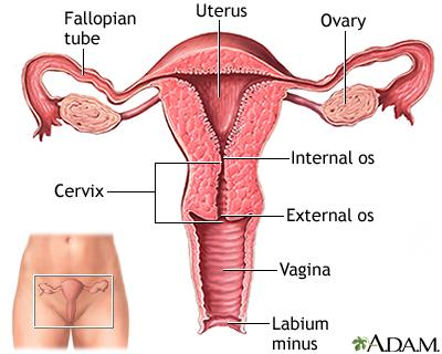 Ectopic pregnancy 19263