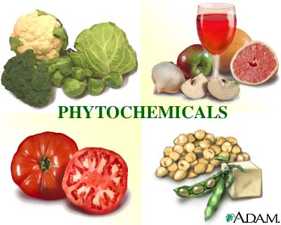 Phytochemicals: MedlinePlus Medical Encyclopedia Image