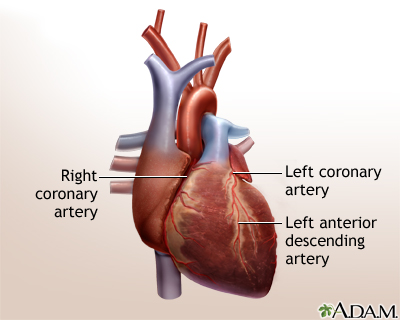 Heart bypass surgery - series - Normal anatomy