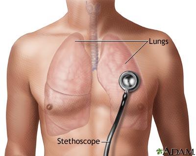 auscultation cardio-pulmonaire
