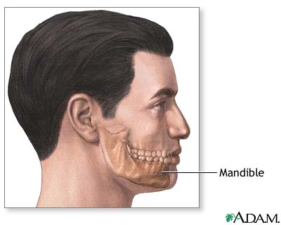 Chin augmentation - series—Normal anatomy: MedlinePlus Medical ...