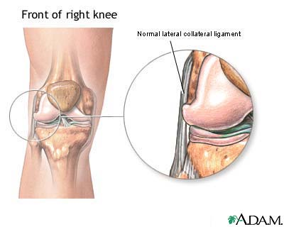 lateral collateral ligament: medlineplus medical encyclopedia image, Human Body