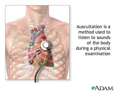 Image result for auscultation definition