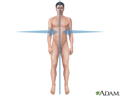 Medial orientation: MedlinePlus Medical Encyclopedia Image