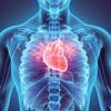 Enfermedades de las válvulas del corazón