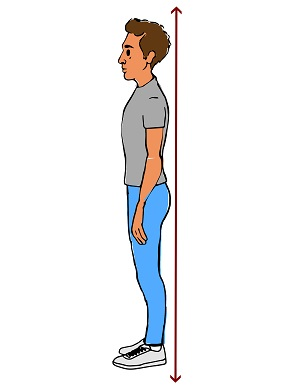 Guide to Good Posture: MedlinePlus