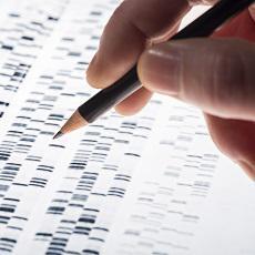 Mutations and Health