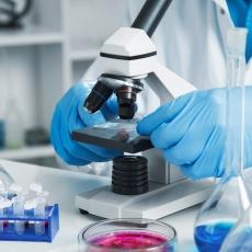 Infecciones por micobacterias
