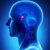 Tumores de la glándula pituitaria
