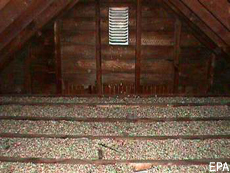 Photograph of an attic containing vermiculite insulation