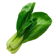 Photograph of bok choy