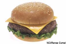 Fotografía de una hamburguesa con queso