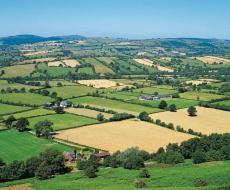 Fotografía de un paisaje rural