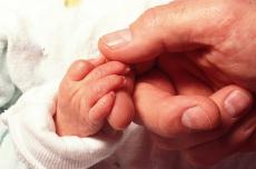 Photograph of a baby's hand holding an adult's hand