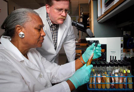 A lab technician, wearing a white lab coat and medical gloves, is seated, holding a vial from a tray of specimens, while another lab technician, also wearing a white lab coat, is standing near her, leaning over so he can get a closer look.
