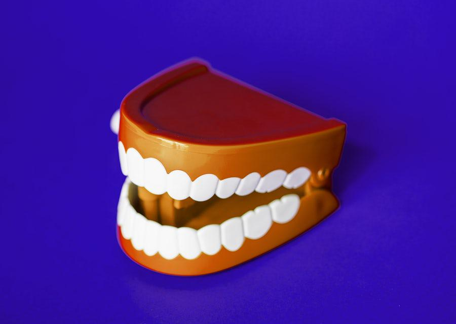 A 3-D model of teeth and gums