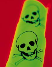 Photograph of two skull and crossbone poison symbols