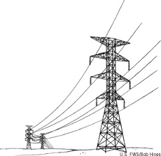 Illustration of power lines