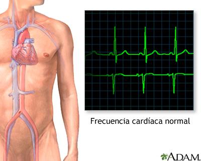 Ritmo cardíaco normal