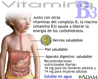 Beneficios de la vitamina B3
