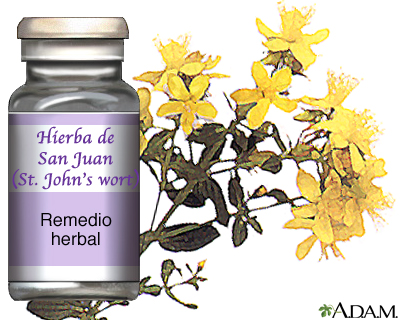 Hierba de San Juan
