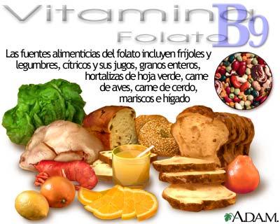 Fuentes de vitamina B9