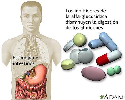 Inhibidores de la alfa-glucosidasa