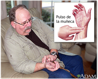 Cómo tomarse el pulso