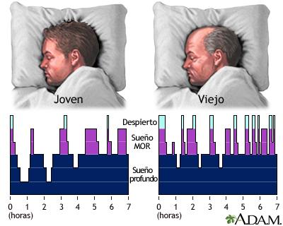 Los patrones del sueño cambian con la edad, los niveles de ansiedad y ...