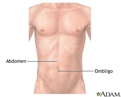 Abdomen externo normal