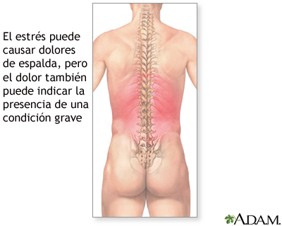 El dolor en la espalda la inflamación del páncreas