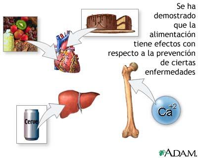 Dieta y prevención de enfermedades