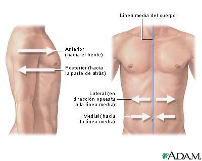 Orientación lateral