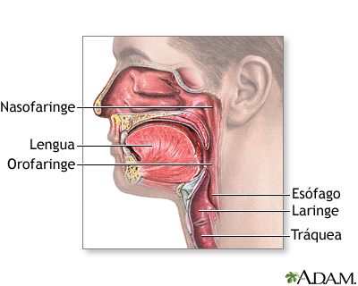 Golpes en la garganta dolorida