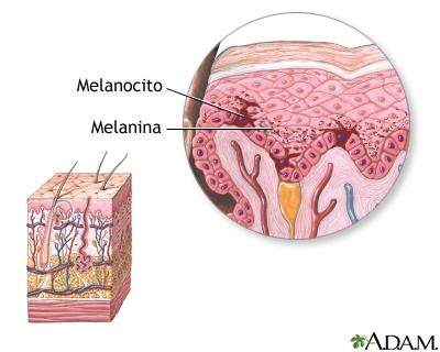 Melanina