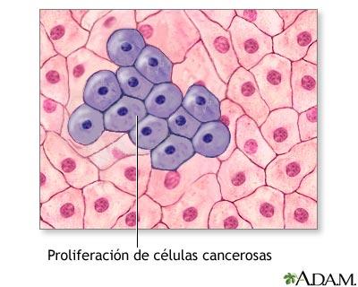 Proliferación de células