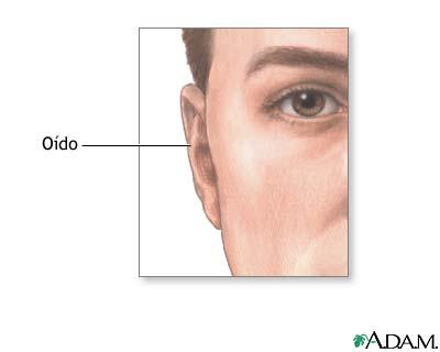 Protuberancia del oído