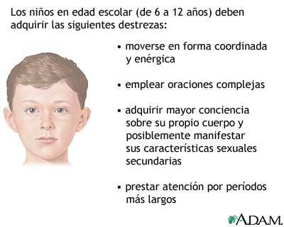Evolución del niño en edad escolar