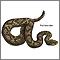 Serpientes venenosas - Serie