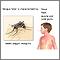 Fiebre por dengue