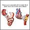 Tabaco y enfermedad vascular