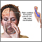 Función del hemisferio cerebral derecho