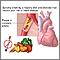 Prevención de la enfermedad cardíaca
